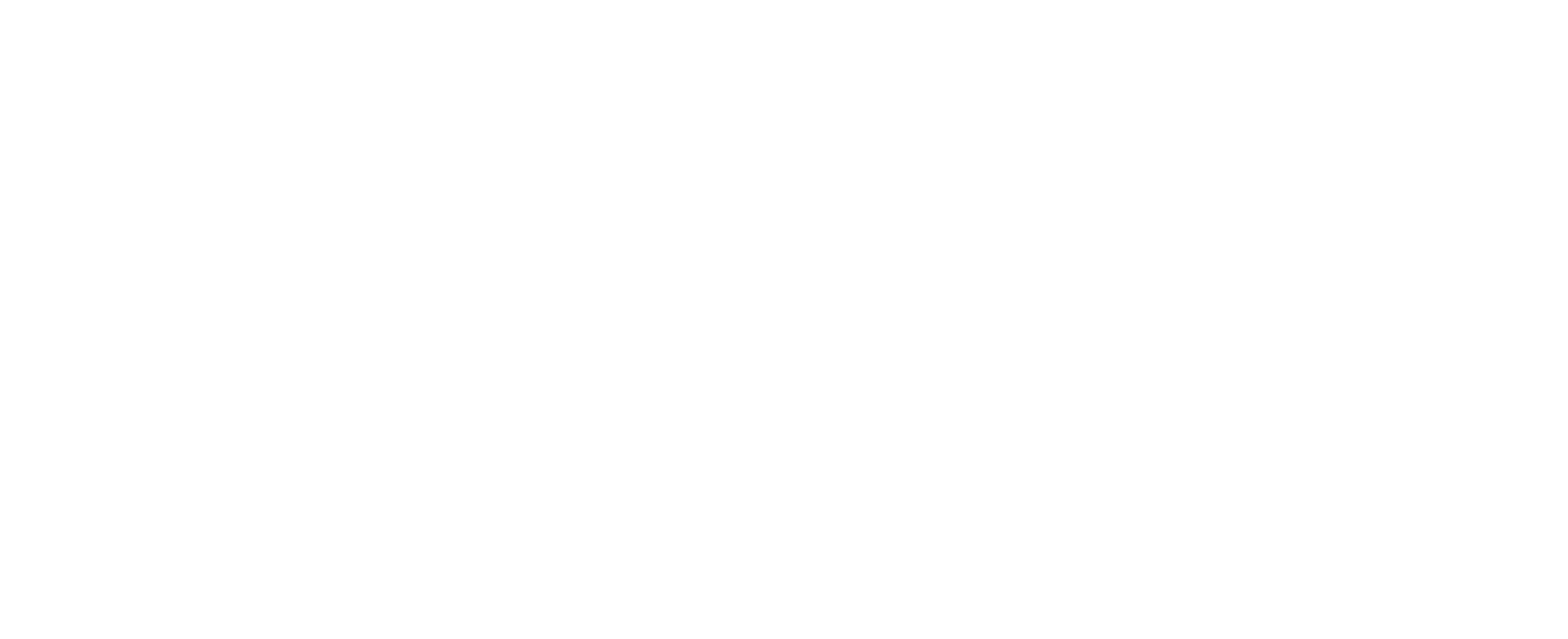 Butiq Logo White